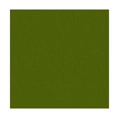 PLAIN MATT GREEN